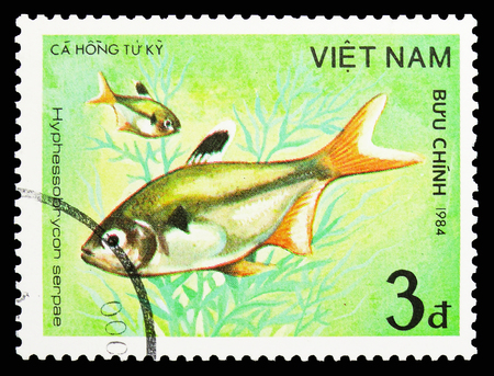 MOSCOW, RUSSIA - SEPTEMBER 26, 2018: A stamp printed in Vietnam shows Serpae Tetra (Hyphessobrycon serpae), Fish - Ornamental serie, circa 1984