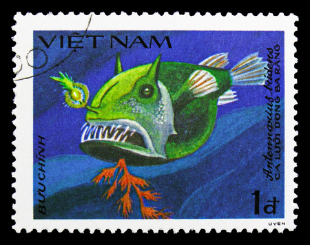 MOSCOW, RUSSIA - SEPTEMBER 26, 2018: A stamp printed in Vietnam shows Striated Frogfish (Antennarius tridens), Fish serie, circa 1984