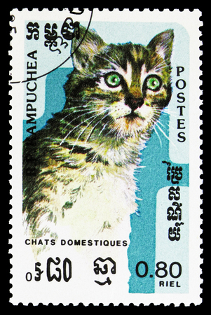 MOSCOW, RUSSIA - SEPTEMBER 26, 2018: A stamp printed in Kampuchea (Cambodia) shows Tabby (Felis silvestris catus), Domestic Cats serie, circa 1985