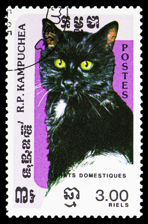 MOSCOW, RUSSIA - SEPTEMBER 26, 2018: A stamp printed in Kampuchea (Cambodia) shows Domestic Cat (Felis silvestris catus), Domestic Cats serie, circa 1985