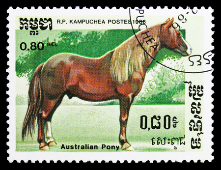 MOSCOW, RUSSIA - SEPTEMBER 26, 2018: A stamp printed in Kampuchea (Cambodia) shows Australian Pony (Equus ferus caballus), Horses serie, circa 1986 Editorial
