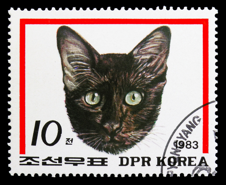 MOSCOW, RUSSIA - SEPTEMBER 26, 2018: A stamp printed in Korea shows Domestic Cat (Felis silvestris catus), Cats serie, circa 1983 Editorial