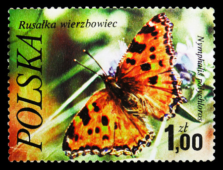 MOSCOW, RUSSIA - SEPTEMBER 15, 2018: A stamp printed in Poland shows Large Tortoiseshell (Nymphalis polychloros), Butterflies serie, circa 1977 Sajtókép