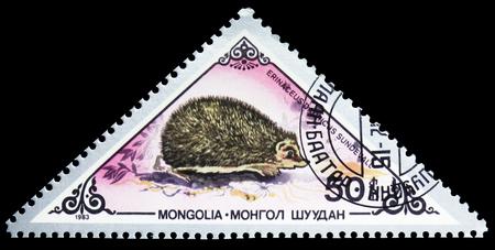 Moscú, Rusia - 26 de septiembre de 2018: Un sello impreso en Mongolia muestra el erizo europeo (Erinaceus europaeus), serie de varios mamíferos, circa 1983