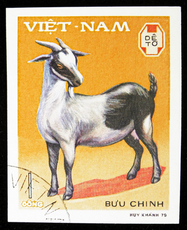 MOSCOW, RUSSIA - SEPTEMBER 26, 2018: A stamp printed in Vietnam shows Domestic Goat (Capra aegagrus hircus), Domestic horned animals serie, circa 1979