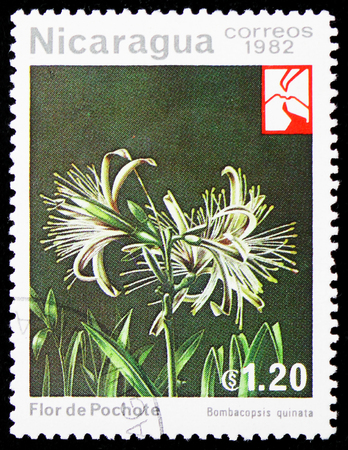 MOSCOW, RUSSIA - JANUARY 4, 2019: A stamp printed in Nicaragua shows Pochote (Pachira quinata = Bombacopsis quinata), Flowers serie, circa 1982 Editorial