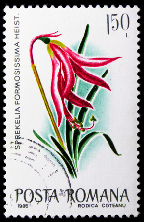 MOSCOW, RUSSIA - JANUARY 4, 2019: A stamp printed in Romania shows Jacobean Lily (Sprekelia formosissima), Flowers serie, circa 1980 Редакционное