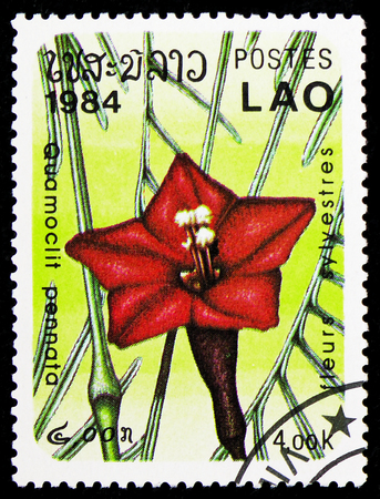 MOSCOW, RUSSIA - FEBRUARY 9, 2019: A stamp printed in Lao Peoples Democratic Republic shows Quamoclit pennata, Flowers serie, circa 1984