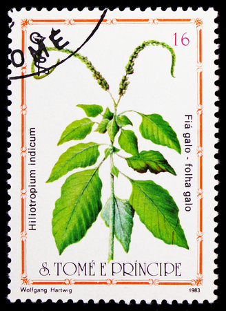 MOSCOW, RUSSIA - FEBRUARY 9, 2019: A stamp printed in Sao Tome and Principe shows Hiliotropium indicum, Medicinal Plants serie, circa 1983