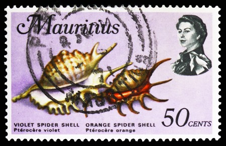 MOSCOW, RUSSIA - FEBRUARY 10, 2019: A stamp printed in Mauritius shows Violet Spider Shell, Orange Spider Shell, Sea Animals serie, circa 1969