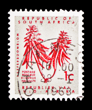 MOSCOW, RUSSIA - FEBRUARY 10, 2019: A stamp printed in South Africa shows Erythrina, Definitive Issue - Decimal Issueserie, circa 1968 Редакционное