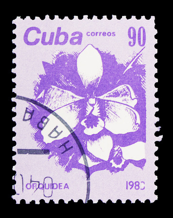 MOSCOW, RUSSIA - FEBRUARY 10, 2019: A stamp printed in Cuba shows Orchid, Flora serie, circa 1983