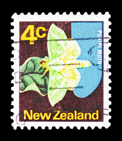 MOSCOW, RUSSIA - FEBRUARY 10, 2019: A stamp printed in New Zealand shows Ghost Moth (Hepialus humuli), Definitive serie, circa 1971