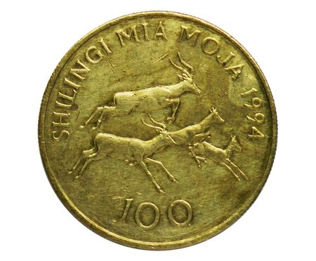 100 Shilingi coin, Bank of Tanzania. Obverse, issued on 1993. Isolated on white Imagens - 127650175