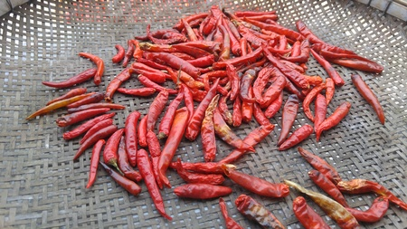 Dry chili on the rice-winnowing basket. Stock Photo