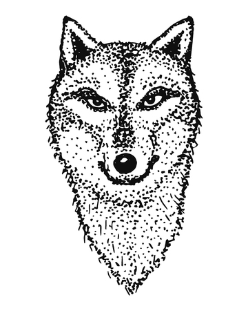 animal head: Outline of the head of a wolf. Animal totem.