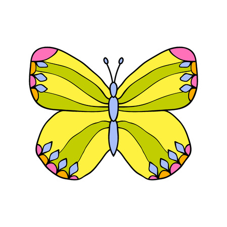 butterfly background: Colored drawn butterfly isolated on white background.