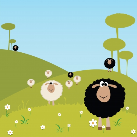 black and white sheeps on special background Vector