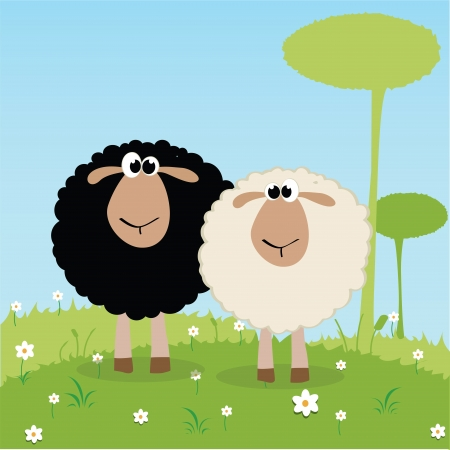 white and black sheep on special background Vector
