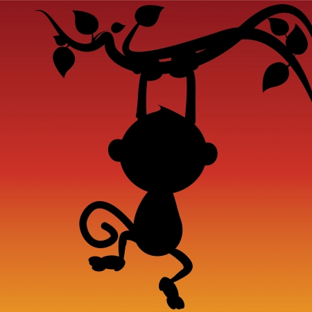 monkey silhouette: silhouette of monkey hanging from a tree