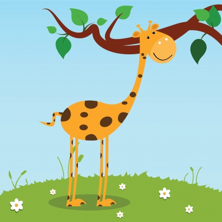 giraffe on field background, vector illustration Vector