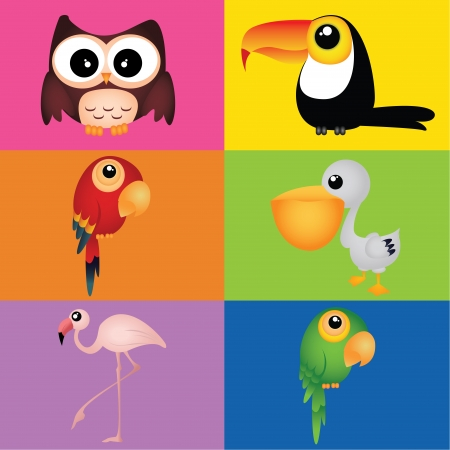 different birds on squares with different color Vector