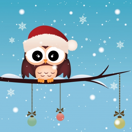 Cute owl with a Christmas cap on special winter sky background