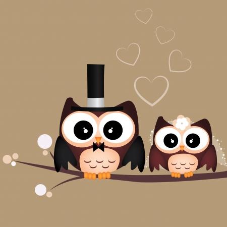 twee schattige uilen op bruine achtergrond net getrouwd Stock Illustratie