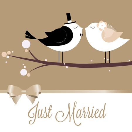 two cute birds in love just married Vector