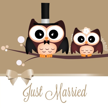 Two cute owls just married on special background