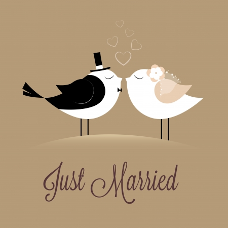 ceremonies: two birds in love Just married on brown background Illustration