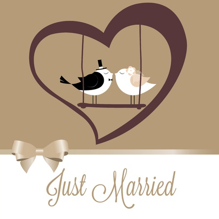 Just Married birds on special brown background Vector