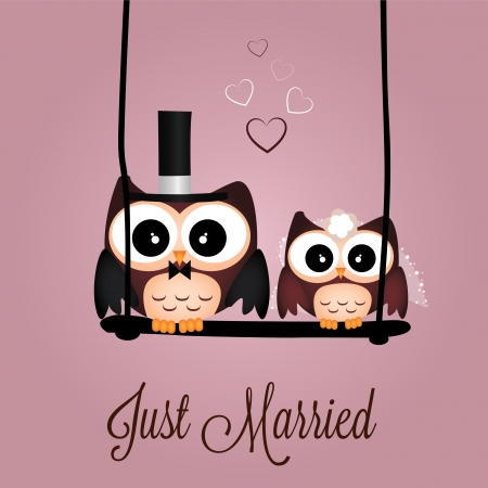 wedding couple: Just married owls on special pink background