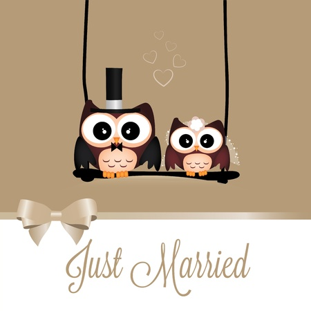 black wedding couple: just married owls on special brown background
