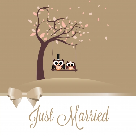 just married owls on special brown background