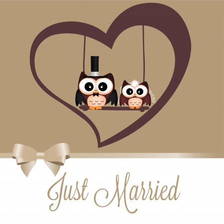 just married owls on special brown background Vector