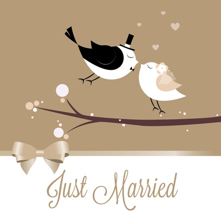 Just married birds on special brown background 向量圖像