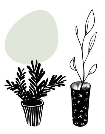 vector iinterior elements: two black house plant in the pots 일러스트