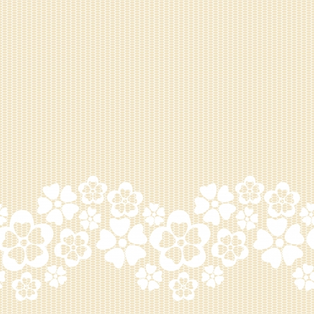 Horizontal white lacy flower border