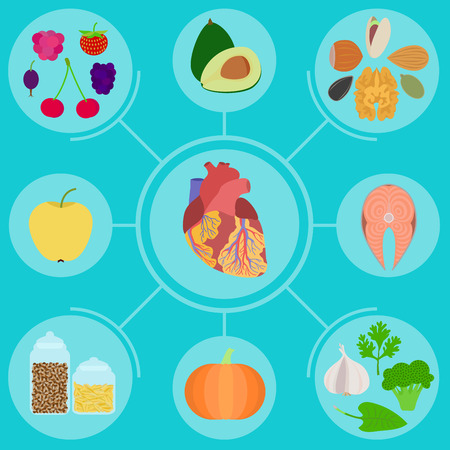 heart vessel: Infographics of food for helpful for healthy heart