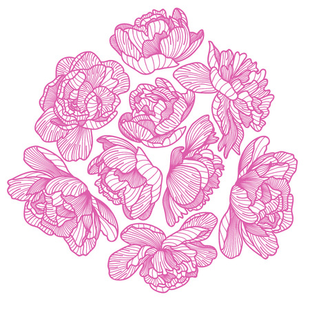 botanics: Peony drawing decorative composition. Illustration