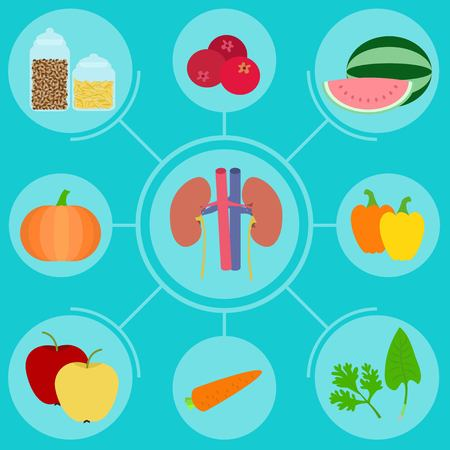 nephrology: Infographics of food helpful for healthy kidney