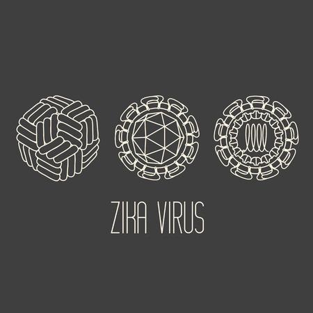 epidemiology: Zika virus structure