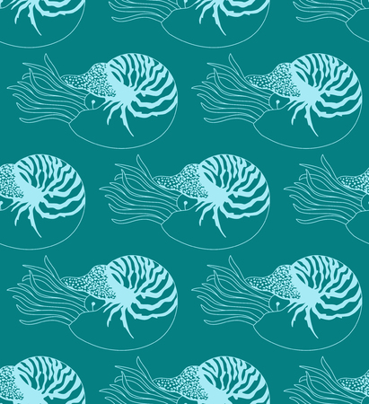 clam illustration: seamless pattern made of Nautilus Pompilius Illustration