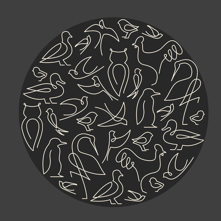 pigeon owl: Round composition made of birds linear drawings