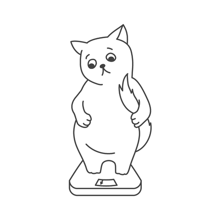 cute: Cute cat character Illustration