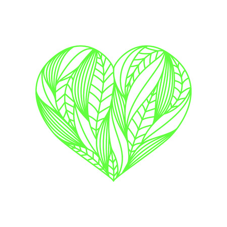 Heart composition made of green linear leaves on white background