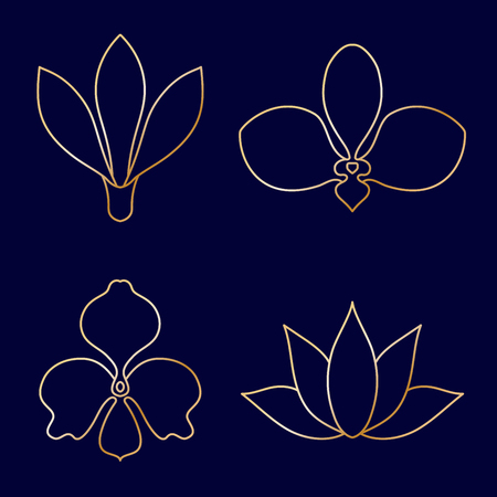 Set of flower line art vector on blue background