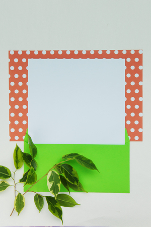 Beautiful background of coral and white paper polka dot with blank list, branch of ficus benjamin, green envelope with copy space for text. Top view, close up flat lay. Card concept.