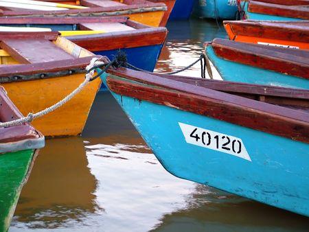 moored: Many boats